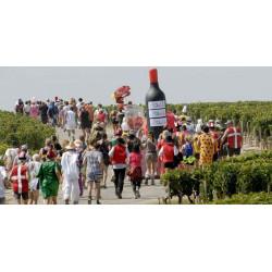 Marathon du Médoc - photo de la 31ème édition