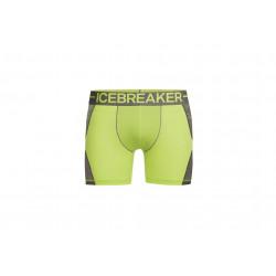 Icebreaker Anatomica Zone M vêtement running homme